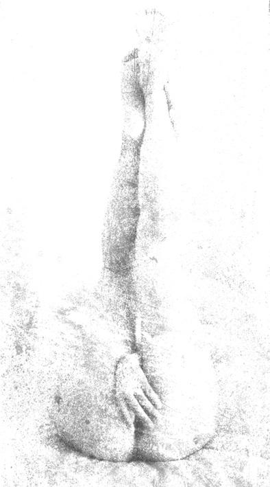 empreinte6